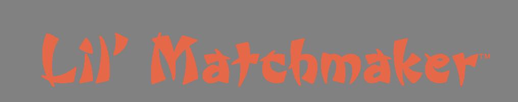 lil-matchmaker-logo